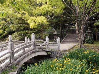 обои для рабочего стола: Мост сад цветы