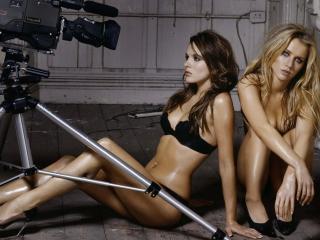 обои Позируют на камеру фото