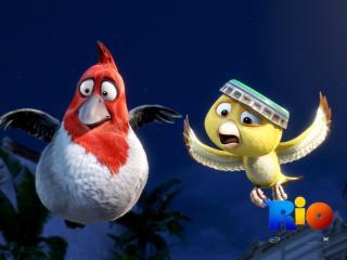 обои Rio Movie птички фото