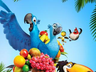 обои Rio Movie фрукты фото