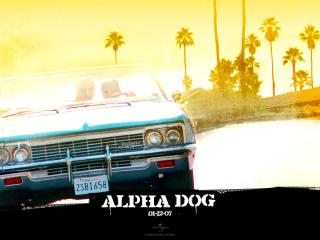 обои Alpha Dog авто фото
