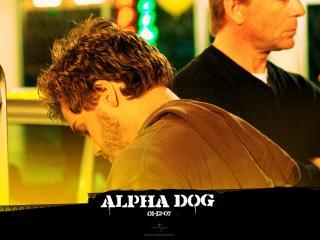 обои Alpha Dog банда фото