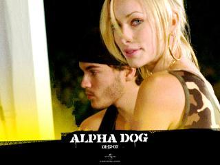 обои Alpha Dog девченка фото