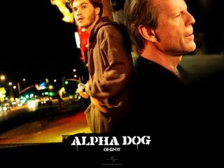 обои Alpha Dog красавчики фото