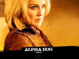 обои Alpha Dog тетка фото