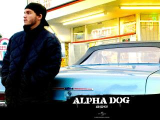 обои Alpha Dog у авто фото