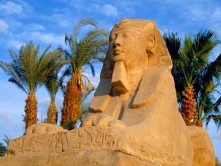 обои для рабочего стола: Сфинкс,   Египет