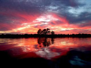 обои Африканское озеро фото