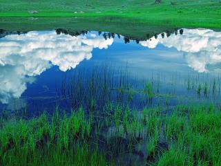 обои Отражение неба в летнем пруду фото