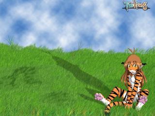 обои Тигрица сидящая на траве фото