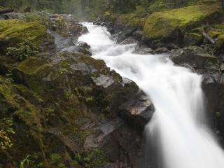 обои Лесной водопад с брызгами фото