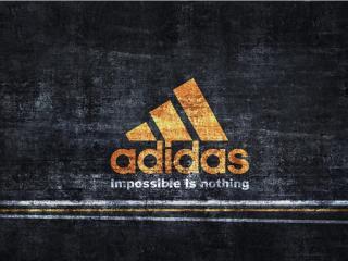 обои Adidas  всегда первый фото