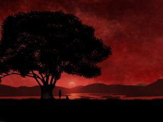 обои для рабочего стола: Красный закат и дерево