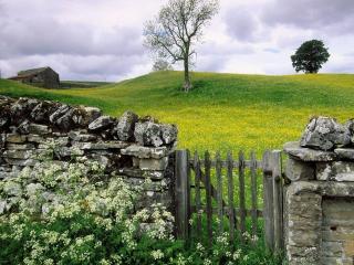 обои Забор,   калитка,   цветы, фото