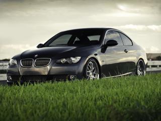 обои Автомобиль в траве фото