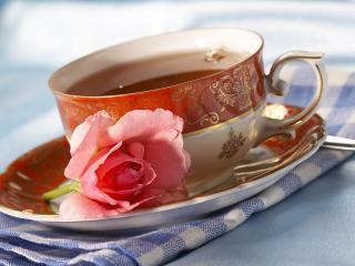 обои Чашка чая фото