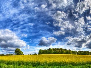 обои Поле и облака фото