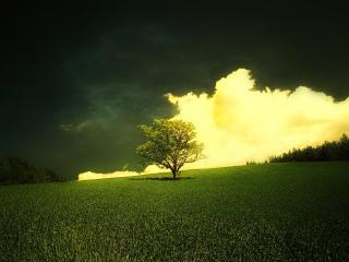 обои Кусочек неба фото