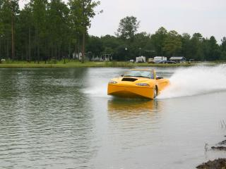 обои CAMI Hydra Spyder желтый фото
