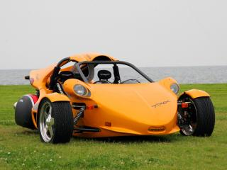 обои Campagna T-Rex оранжевый фото