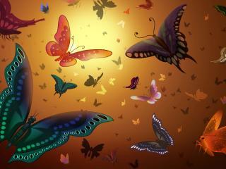 обои Разноцветные бабочки фото