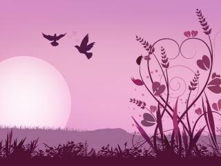 обои Розовые цветы, птицы, заходящее солнце фото