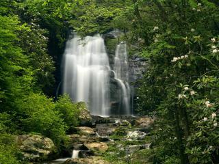 обои Высокий водопад в лесу фото