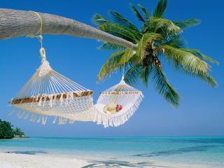 обои Райский отдых фото