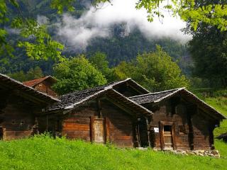 обои Деревянные домики на опушке леса фото