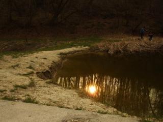 обои Весеннее солнце отражается в небольшом пруду фото