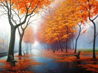 обои Осенняя аллея парка фото