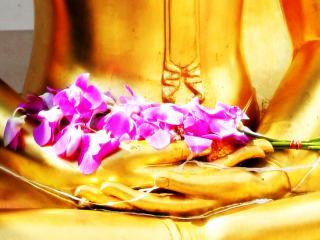 обои Будда с букетом розовых цветов фото