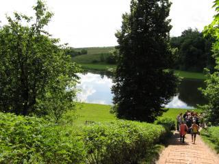 обои Дорога к озеру фото