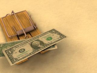 обои Доллары в мышеловке фото