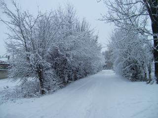 обои Зимний пейзаж,  дорога фото