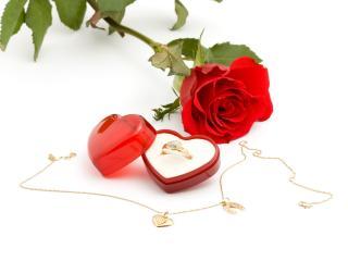обои Подарок любимой Роза,   коробочка кольцо фото