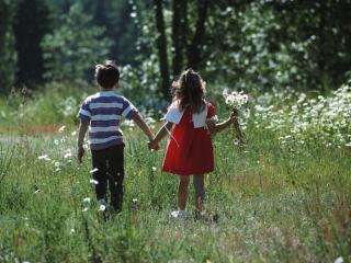 обои Прогулка на красивом лугу фото