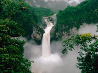обои Молочный водопад в зелени фото