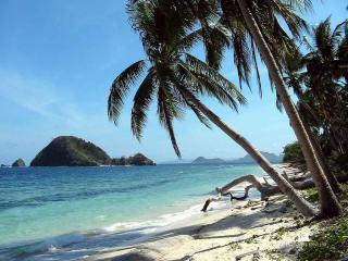 обои Море,  остров,  пальмы фото