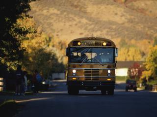 обои Школьный автобус собирает школьников на учёбу фото