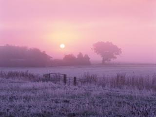 обои Зимний туман на ранчо фото