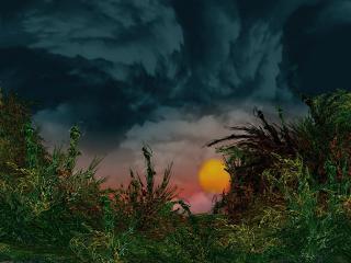 обои Буря надвигается фото
