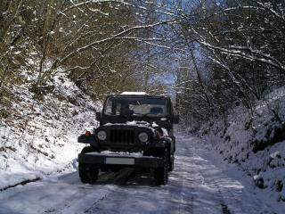 обои Asia Rocsta зима фото