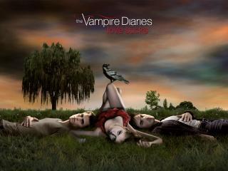 обои Дневники вампира фото