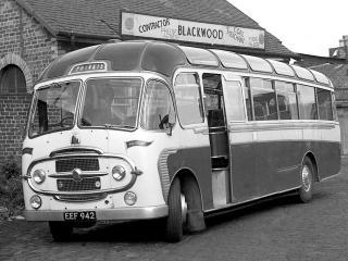 обои Plaxton Bedford SB (C42G) 1954 перед фото