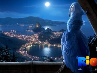 обои Вид на ночной Рио фото