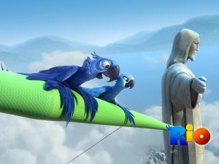 обои Попугаи на крыле дельтаплана фото