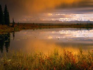 обои Пруд осенью близ горы Мак-Кинли, Национальный Парк Денали, Аляска, закат фото
