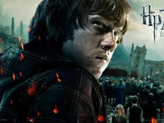 обои Гарри Поттер.  Дары смерти Рон фото