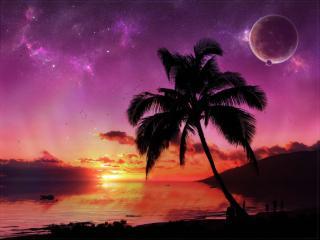 обои Красивый закат в тропиках фото